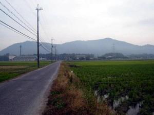 1)蒲生野と雪野山.jpg